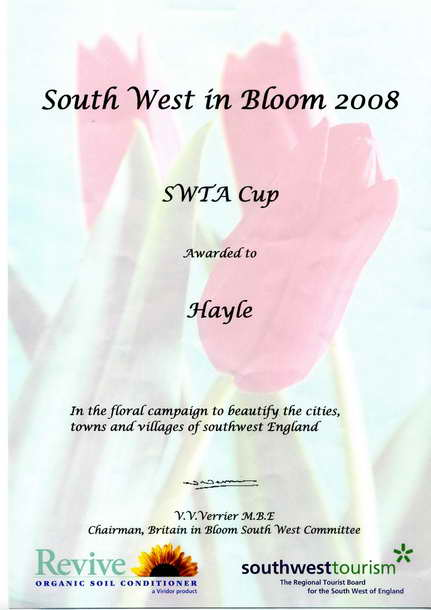 swta cup certificate